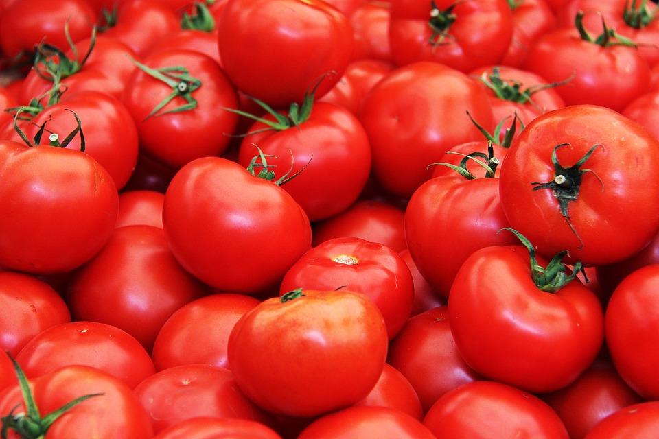 rajčata na lykopen