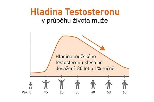 hladina testosteronu u muže