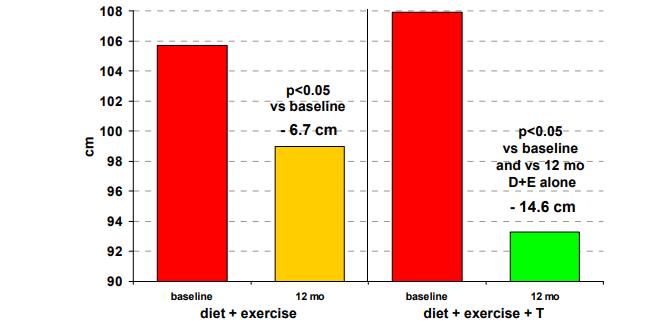 testosteron a váha
