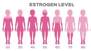 hladina estrogenu u žen vzhledem k věku