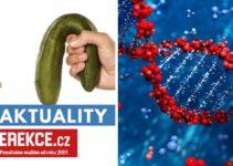 erektilní dysfunkce a geny