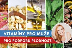 vitamíny pro muže na plodnost