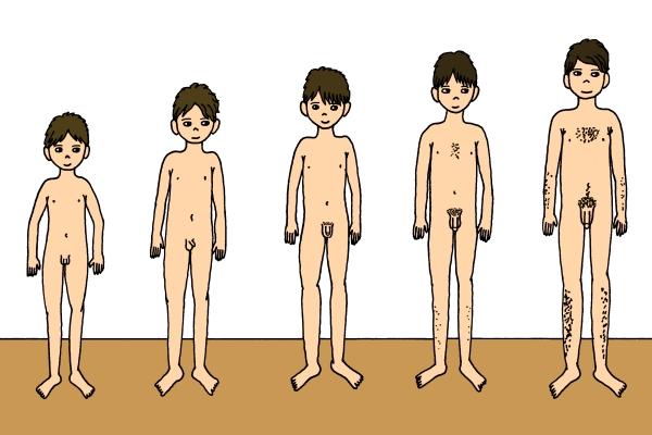 tělesný vývoj u kluků