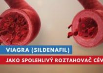 viagra vazodilatátor