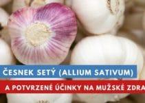 Česnek setý a účinky na mužské zdraví