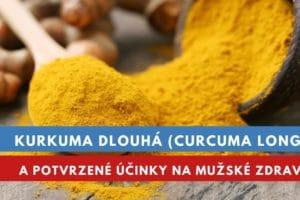 Kurkuma dlouhá, kurkumin a účinky na mužské zdraví