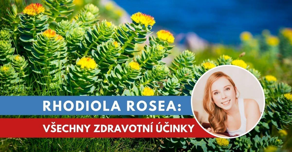 Rhodiola rosea, účinky